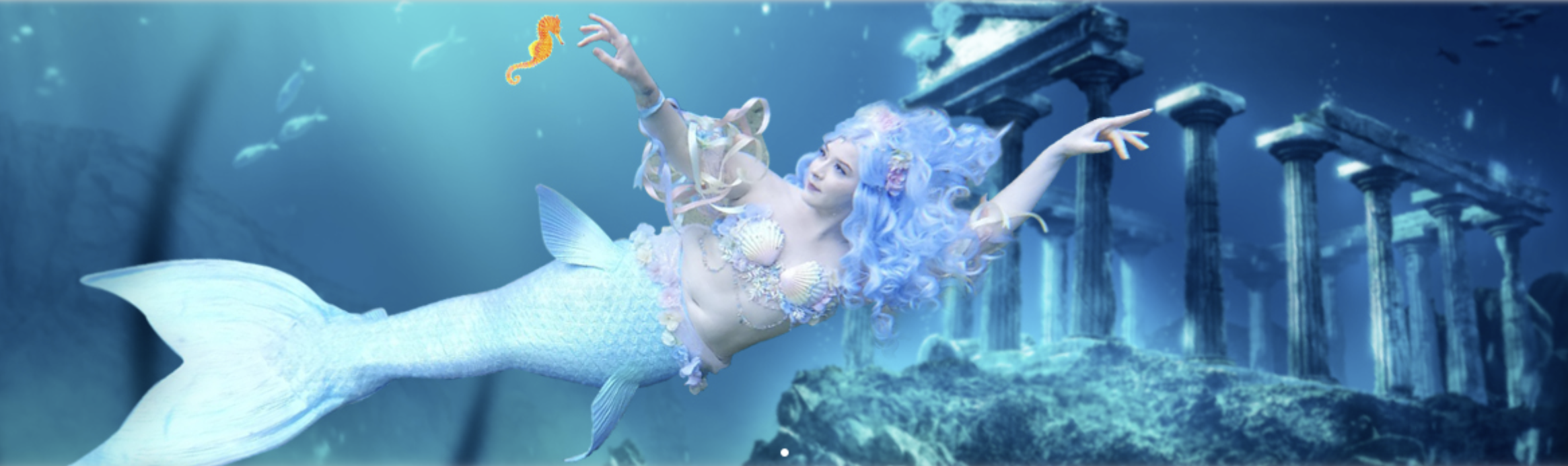 Long Island Aquarium Mermaid
