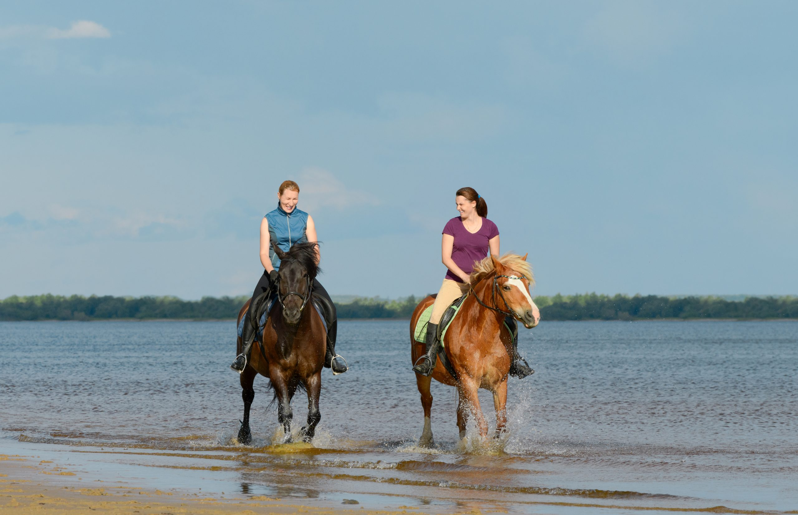 Two,Woman,Are,Riding,On,Horseback,On,Water.,Two,Laughing