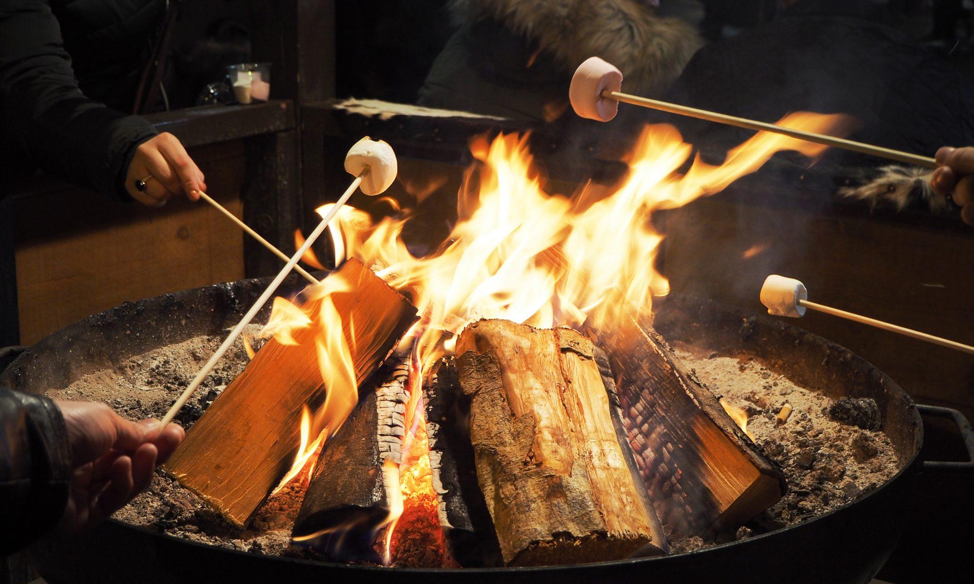 People,Roasting,Marshmallows,Around,Fireplace,,Enjoying,Their,Holiday